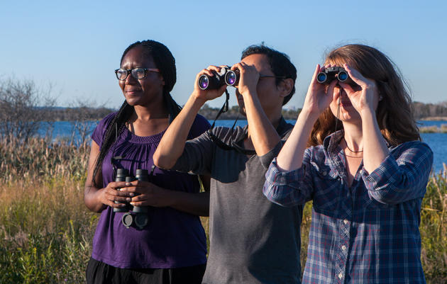 Must-Visit Birding Locations in Connecticut