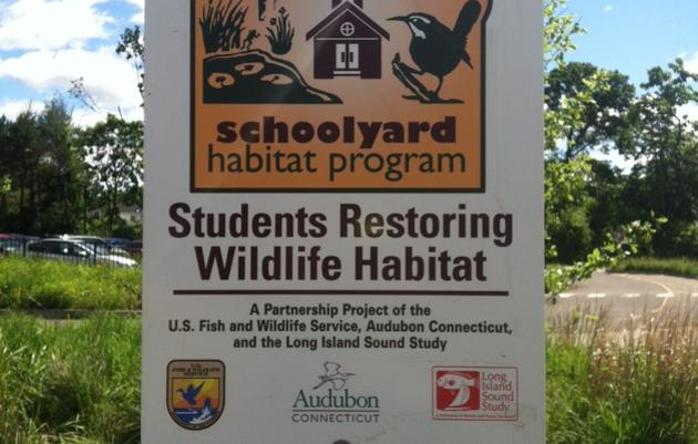 Schoolyard Habitat Knowledge Network
