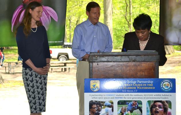 New Haven Designated an Urban Bird Treaty City