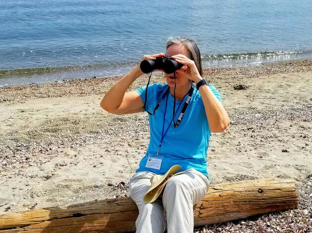 Dedicated Volunteer Shares Shorebird Passion