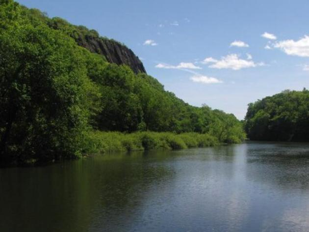 Audubon Connecticut Seeking Proposals for Development of a Conservation Plan at East Rock Park in New Haven