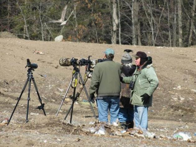 Take Part in the 19th Annual Great Backyard Bird Count