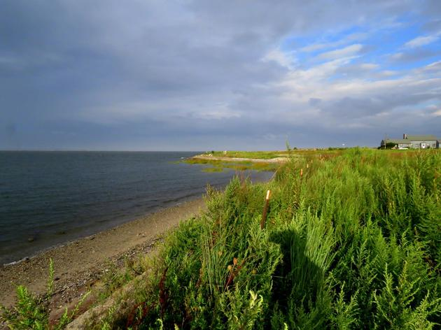Federal Funding Bill Includes $8 Million to Protect Long Island Sound