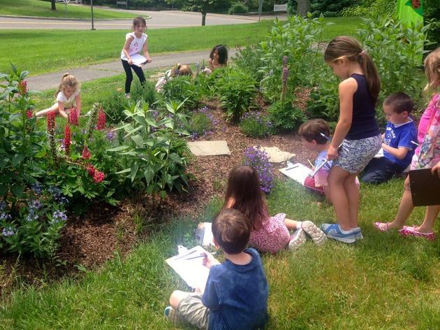 Audubon Announces Recipients of 2016-2017 Schoolyard Habitat Grants